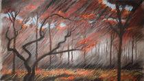 Das Rote Herz des Waldes by Hanna Aschenbach