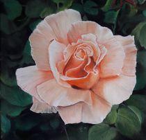 Rosenblüte by Erhard Sünder