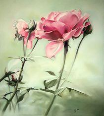 Rosen von Erhard Sünder