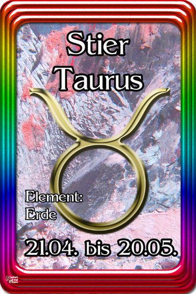 02-stier-taurus-001