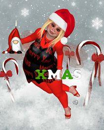 Pummelfee Weihnachten von Conny Dambach
