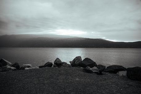 Gardasee-238-irynamathes