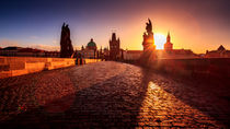 Charles Bridge with statues at sunrise in Prague  by Zoltan Duray