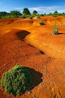 Small desert von Gaspar Avila