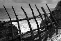 Fence von Gaspar Avila