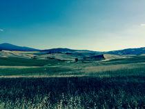 Amazing Tuscany by Adriana Schiavon