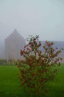 Herbststimmung mit Nebel von Bernhard Kaiser