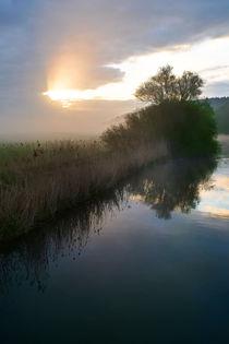Der Weg des Lichts by Bernhard Kaiser