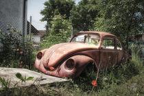 Mr Beetle Zyklus I von Ingo Mai
