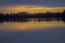 Abend am Baggersee von Hartmut Binder