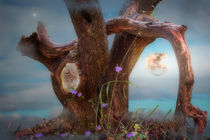 Tree In Denial by CHRISTINE LAKE
