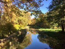 Herbst Freude von Stefan Wehmeyer