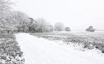Strenger Frost by gscheffbuch