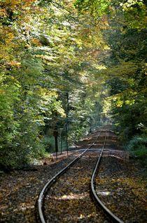 Der Weg - wohin ...... by Stefan Wehmeyer