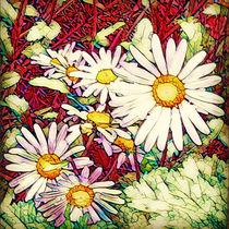 Flowers von marohm