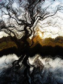 Herbsttraum an der Rezart von Stefan Wehmeyer