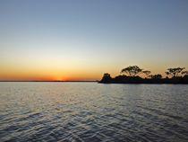 Pantanal Sunset by Annika  Leichtweiss