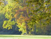 Herbst im Park-2 von maja-310