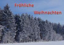 Weihnachtspostkarte Winterwald 2 von kattobello
