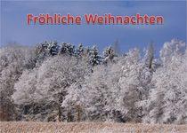Weihnachtspostkarte Winterwald am Feldrand 1 von kattobello