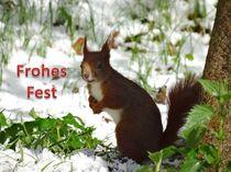 Weihnachtspostkarte Eichhörnchen im Schnee 1 von kattobello