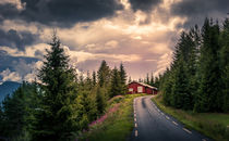 The red cabin von Nuno Borges