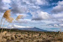 Mount Tongariro von Roland Seichter