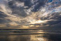 Muriwai Beach von Roland Seichter