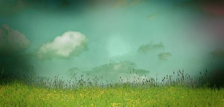 Daydreamingin-the-meadow-6000x2860