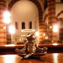 scheinheiliger #yogafrosch by obixjekte