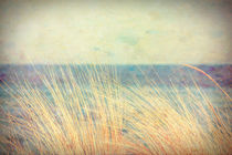 From the Sea Shore by Kreativ Corner