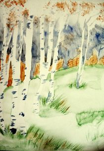 birch trees by Maria-Anna  Ziehr