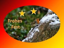 Weihnachtspostkarte Rotkehlchen von kattobello
