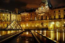 Paris, Louvre museum by Tania Lerro