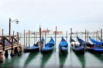 Venice, Italy by Tania Lerro