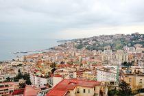 Naples panoramic view by Tania Lerro