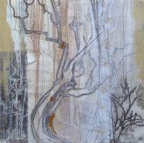 Winterwald von Brigitte Eckl