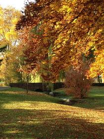 Herbst von galerie artgero