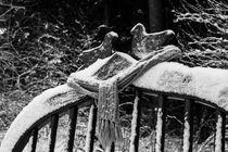 Winter auf dem Liebesbankweg im Harz von Andreas Levi