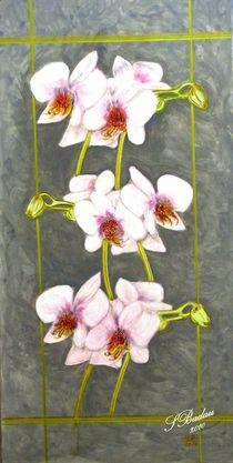 Orchideengirlande - Acryl auf Leinwand von Susanna Badau