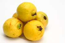 Guava fruits by Gaspar Avila