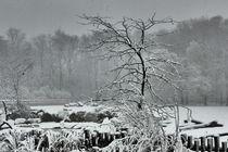 Winterlandschaft by maja-310