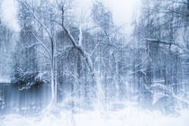 Mystic Winter Landscape