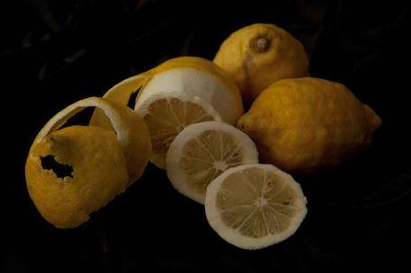 Zitronen-02