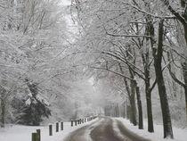 Winterlandschaft-1 by maja-310