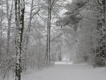 Winterlandschaft-2 by maja-310
