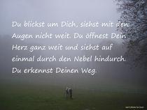 Öffne Dein Herz by Andrea Köhler