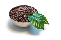 Kaffeebohnen in einer Schüssel von Mathias Karner