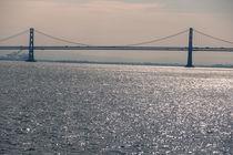 Bridgescape von Raquel Cáceres Melo