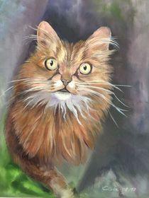 "Katze by Dorothea ""Elia"" Piper"